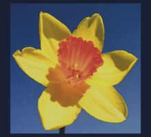 Yellow and Orange Colored Daffodil Close Up One Piece - Short Sleeve