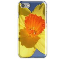 Yellow and Orange Colored Daffodil Close Up iPhone Case/Skin