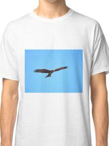 Black Kite Soaring Classic T-Shirt