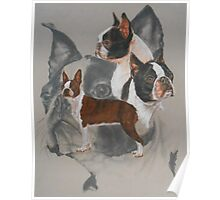 Boston Terrier/Ghost Poster
