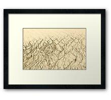 Sand Sketch Framed Print
