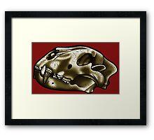 Lion Skull Framed Print
