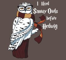 Harry Potter Inspired Hipster Owl Baby Tee