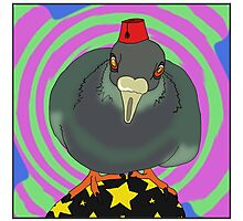 Look Into My Pigeon Photographic Print