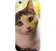 Meet Olaf iPhone Case/Skin