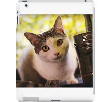 Meet Olaf iPad Case/Skin
