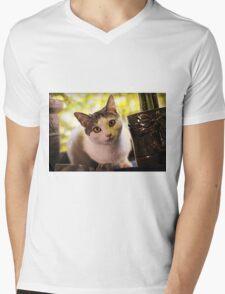 Meet Olaf Mens V-Neck T-Shirt