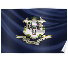 Connecticut State Flag Poster