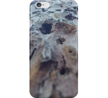 Barking Up the Right Tree iPhone Case/Skin