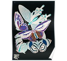 Emile Allain Séguy or Seguy Papillons Butterflies 1925 007 Inverted Poster