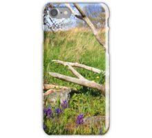 Purple Valley iPhone Case/Skin