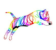 colored tiger Photographic Print