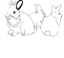 Bunny trio by Kaylin Watchorn