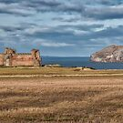 Tantallon Castle and Bass Rock by Jeremy Lavender Photography