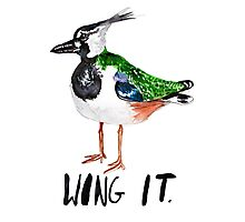 Wing It Photographic Print