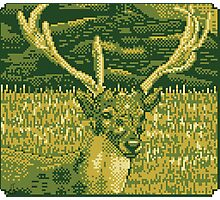 Pixel Deer Photographic Print