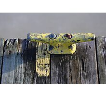 Yellow Dock Cleat on Frozen River Photographic Print