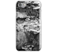 Fallen Birch with Fungi 3 BW iPhone Case/Skin