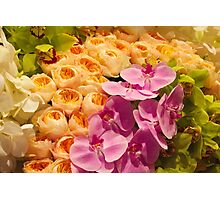 Orchid Topiary Photographic Print