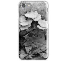 Fallen Birch with Fungi 4 BW iPhone Case/Skin