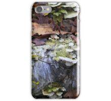 Fallen Birch with Green Fungi 3 iPhone Case/Skin