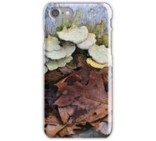 Fallen Birch with Green Fungi 4 iPhone Case/Skin