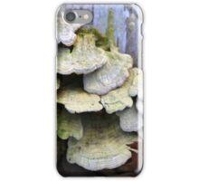 Fallen Birch with Green Fungi iPhone Case/Skin