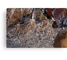 Hiking Trail Ice with Leaves 3 Canvas Print