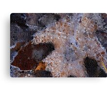 Hiking Trail Ice with Leaves 6 Canvas Print