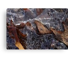 Hiking Trail Ice with Leaves Canvas Print