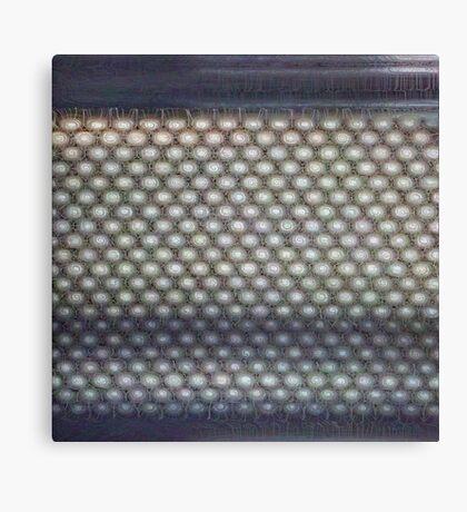 Hexagon mesh 3 - Phlox Canvas Print