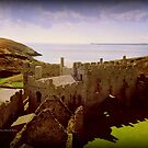 Castle Remains by Charmiene Maxwell-Batten