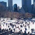 Central Park, Skating Rink, Winter View, New York City by lenspiro