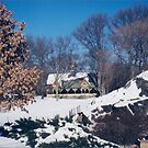 Central Park, Winter View, New York City by lenspiro