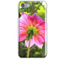 Stem and Petal of a Purple Flower iPhone Case/Skin