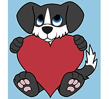 Valentine's Day Black Dog with Blaze & Red Heart Photographic Print