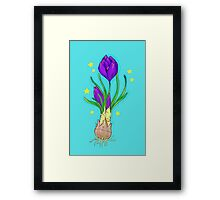 Right in the Crocus Framed Print