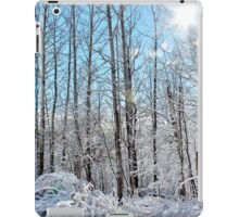 A Blanket of Soft White iPad Case/Skin
