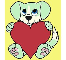 Valentine's Day Green Dog with Blaze & Red Heart Photographic Print
