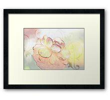 Glowing Ranuncula Framed Print