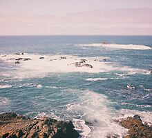California's Pacific Ocean by vvinicius