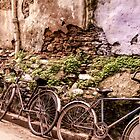 Cycles and rubble, Udaipur, Rajasthan, India by indiafrank
