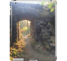 Hole in the Wall iPad Case/Skin