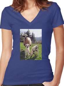 Ewe and Twin Spring Lambs  Women's Fitted V-Neck T-Shirt