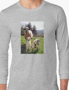 Ewe and Twin Spring Lambs  T-Shirt