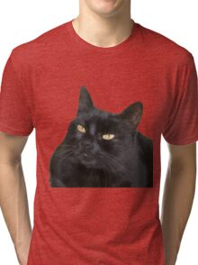 Relaxed Black Cat Portrait Vector Isolated Tri-blend T-Shirt