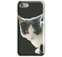 A Max And Mantle Bi Colour Cat Isolated iPhone Case/Skin
