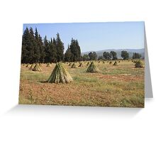 Sesame Harvest Greeting Card