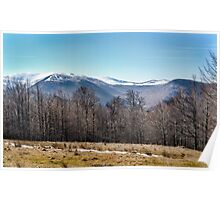 A winter day in the mountains Poster