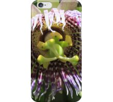 Flower of a Passion Fruit iPhone Case/Skin